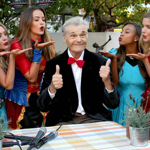 Fred Willard, The Bachelor